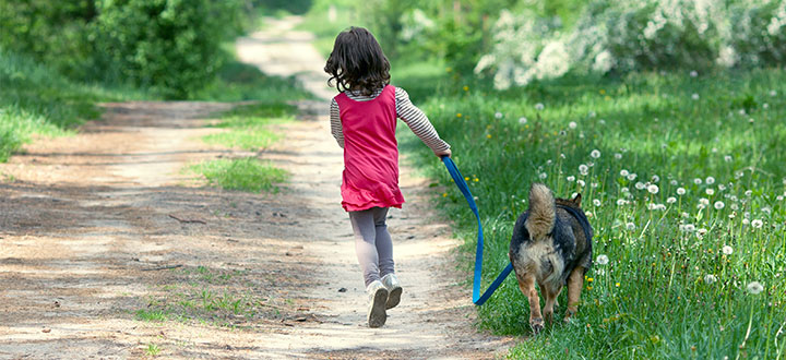 Shutterstock-Child-Dog
