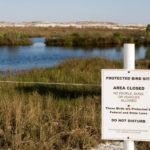 Liberating Public Lands